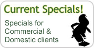 Current Cleaning Specials